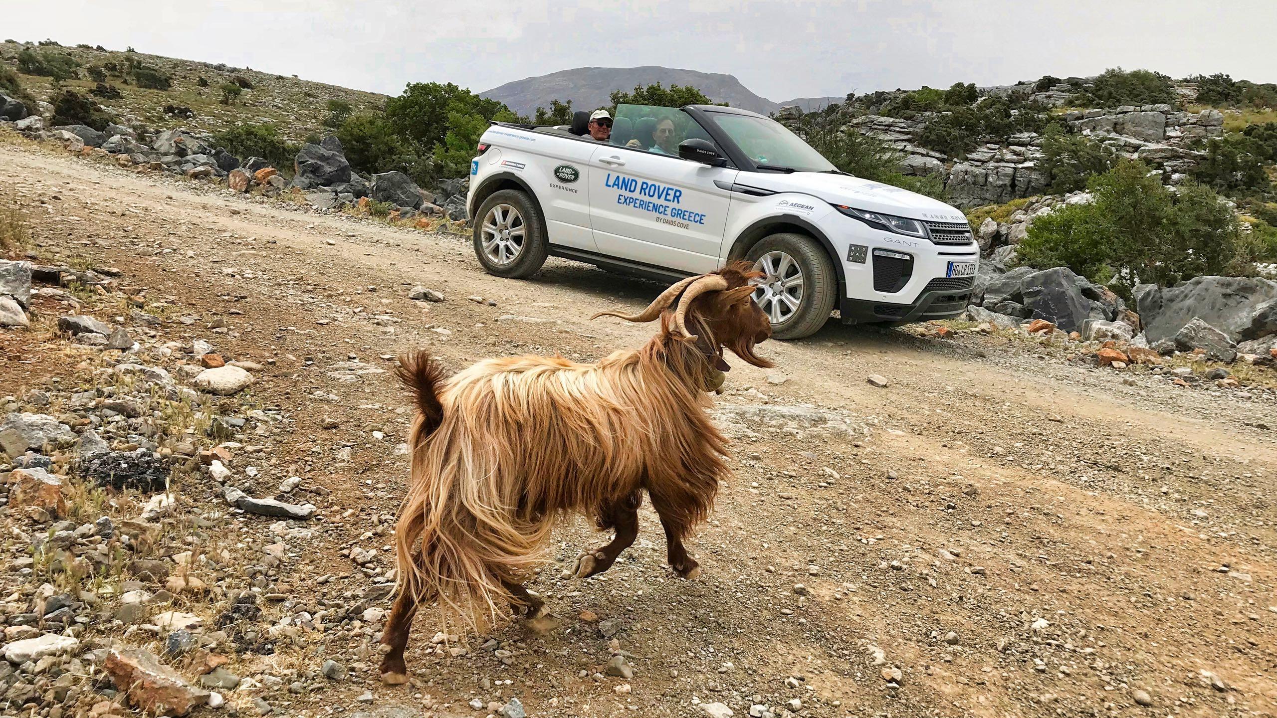 Hotel Daios Cove Kreta Land Rover Experience Greece Tour