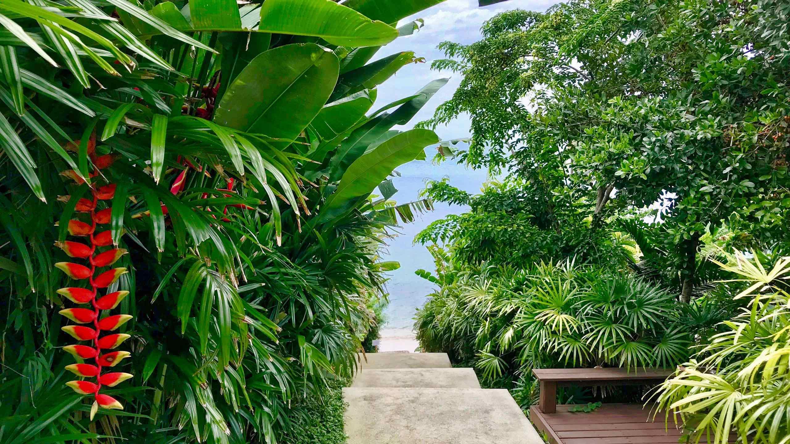 Amatara Wellness Resort Phuket Weg zum Beach