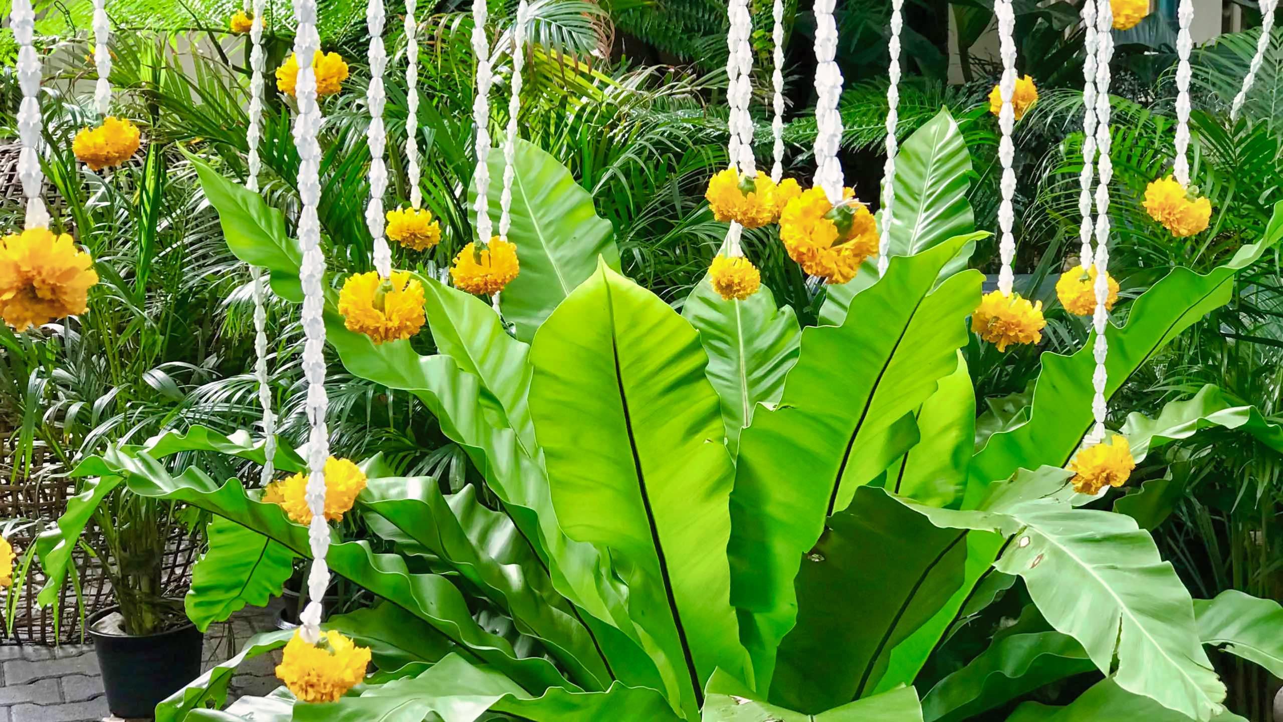 The Museum of Floral Culture: Täglich wird die Blumenkunst frisch dekoriert.
