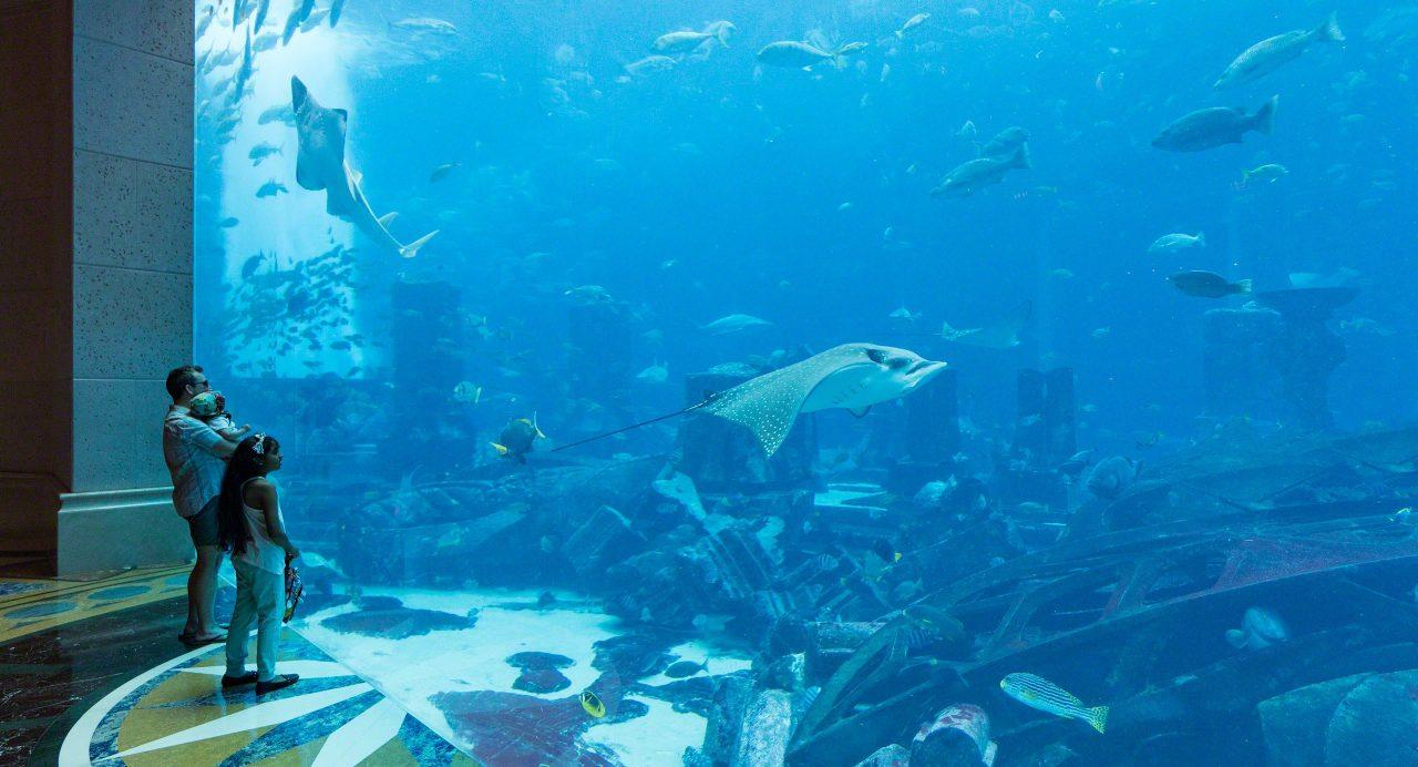 Großartiges Erlebnis nicht nur für die Kleinen. Ambassador Lagoon Aquarium im Atlantis The Palm. Foto © Mirco Seyfert