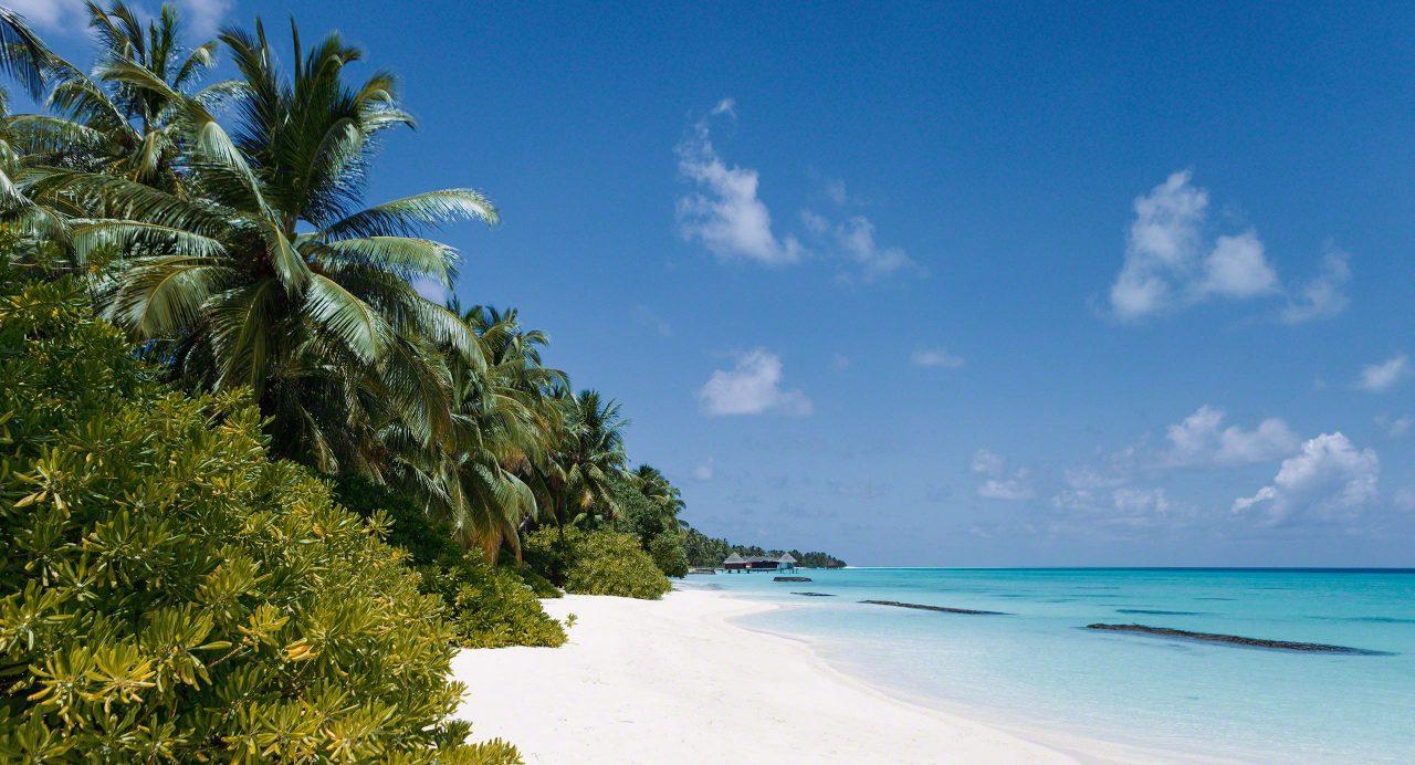 Sandstrand und Natur pur auf Kuramathi Island Malediven.
