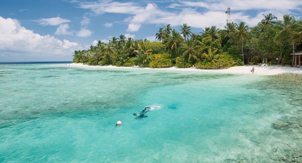 Hausriff auf Bandos Malediven. Foto © Mirco Seyfert