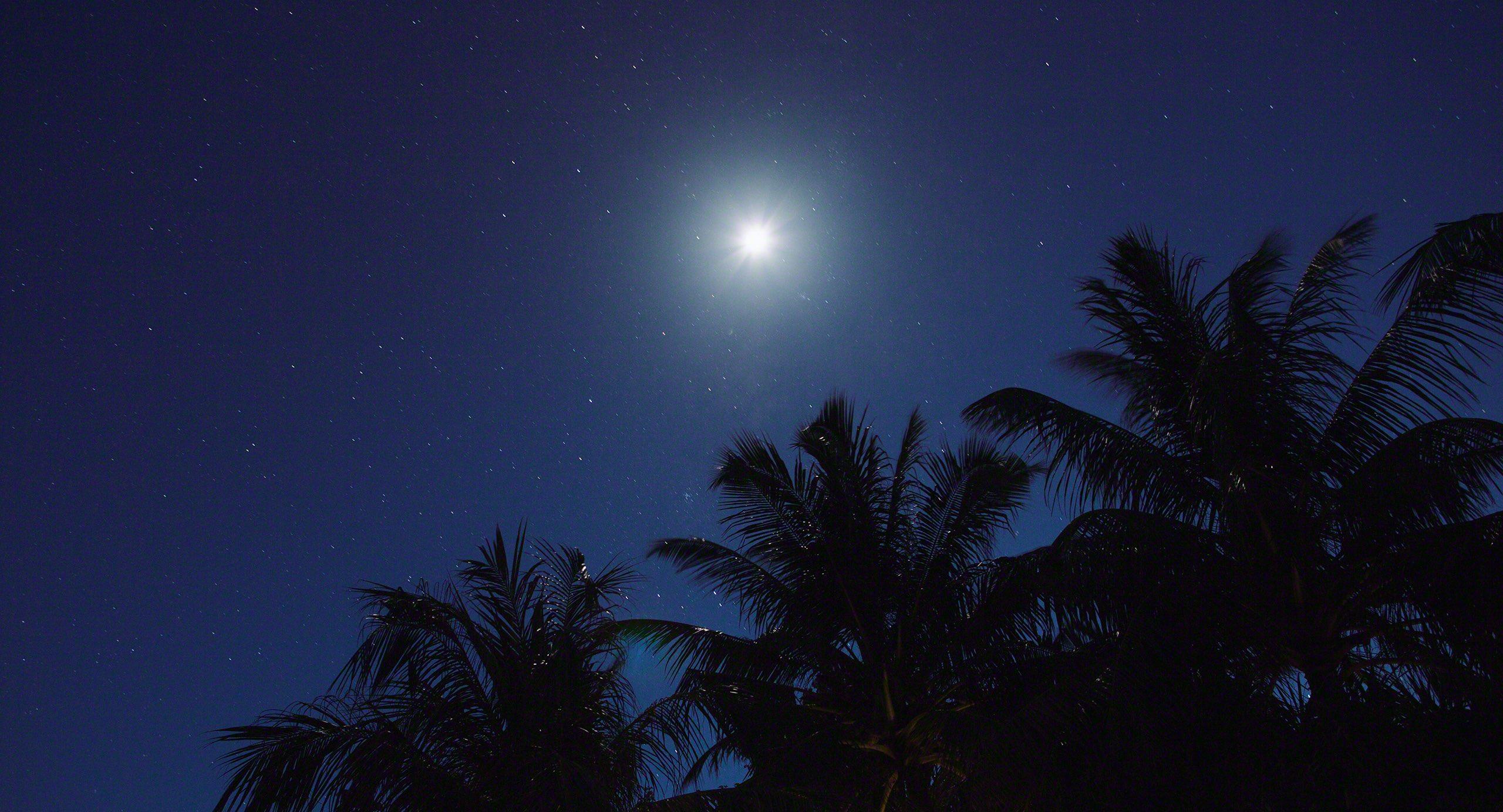 Hier ist der Himmel voller Sterne.