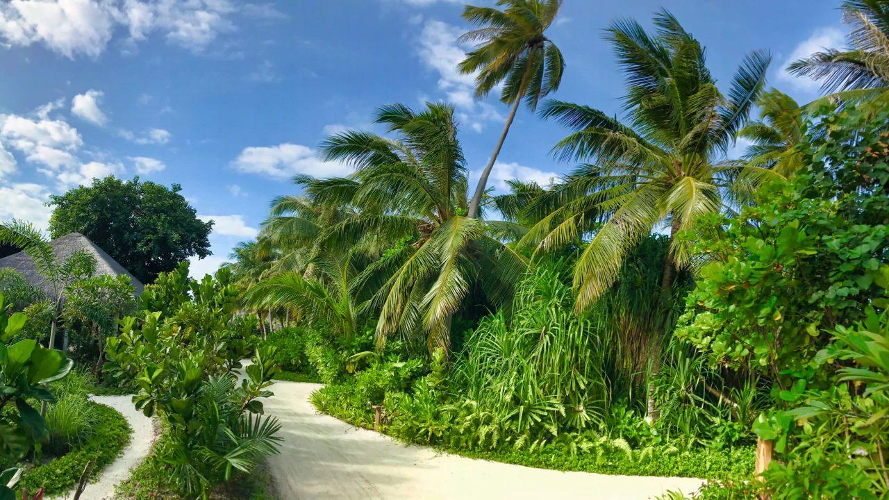 Milaidhoo Island Malediven Garten