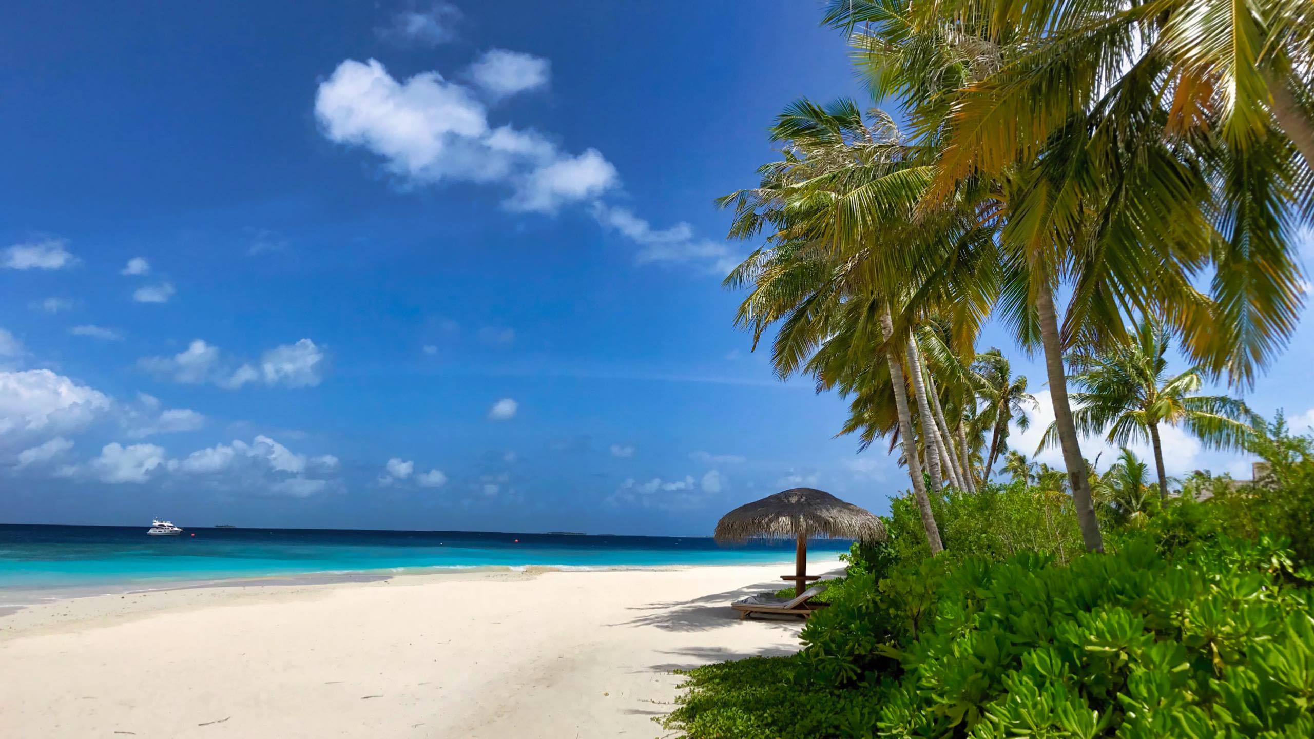 Milaidhoo Island Malediven Sandstrand Meer Palmen
