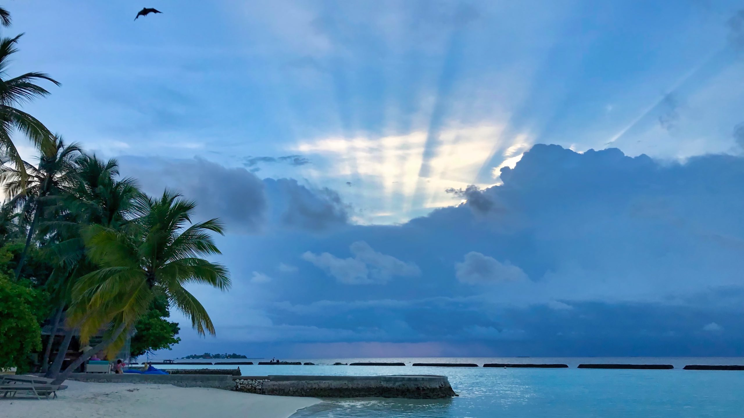 Der Sonnenuntergang, den Tag anders, jeden Tag wunderschön.