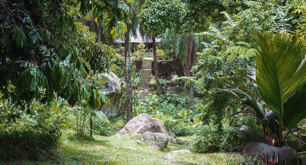 Seychellen Mont Fleuri, Botanischer Garten Victoria © Mirco Seyfert
