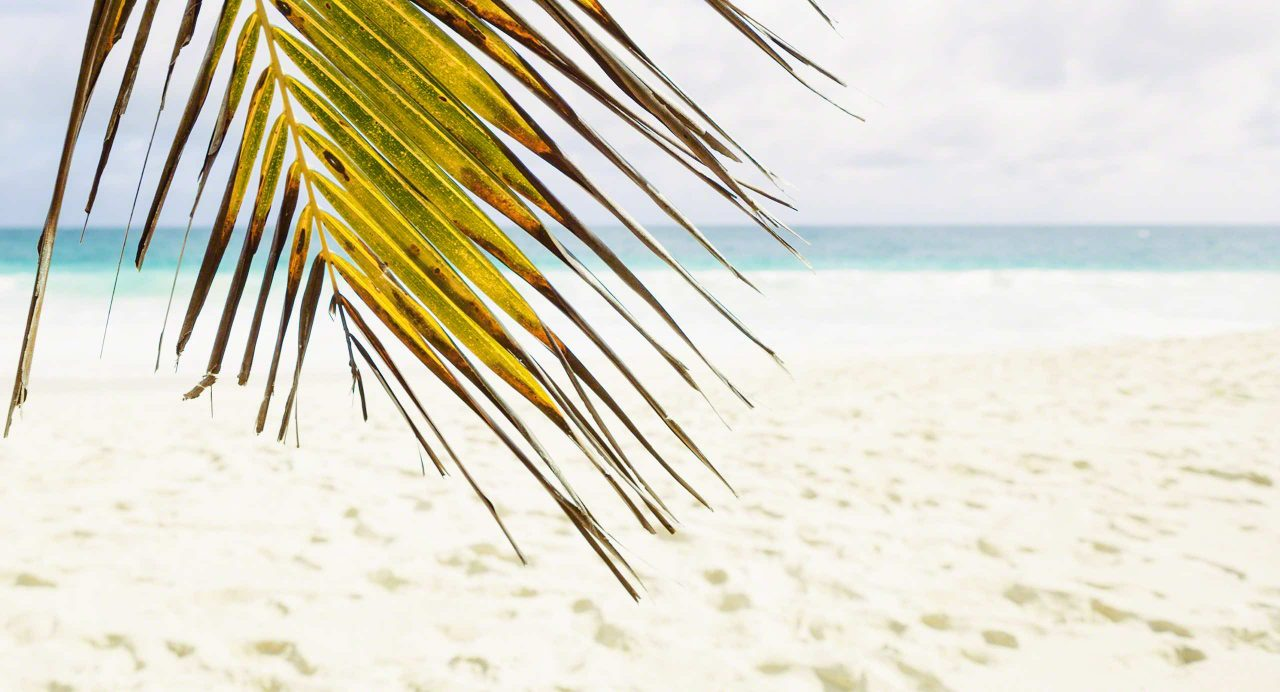 Seychellen Traumstrand Anse Intendance, Mahé © Mirco Seyfert