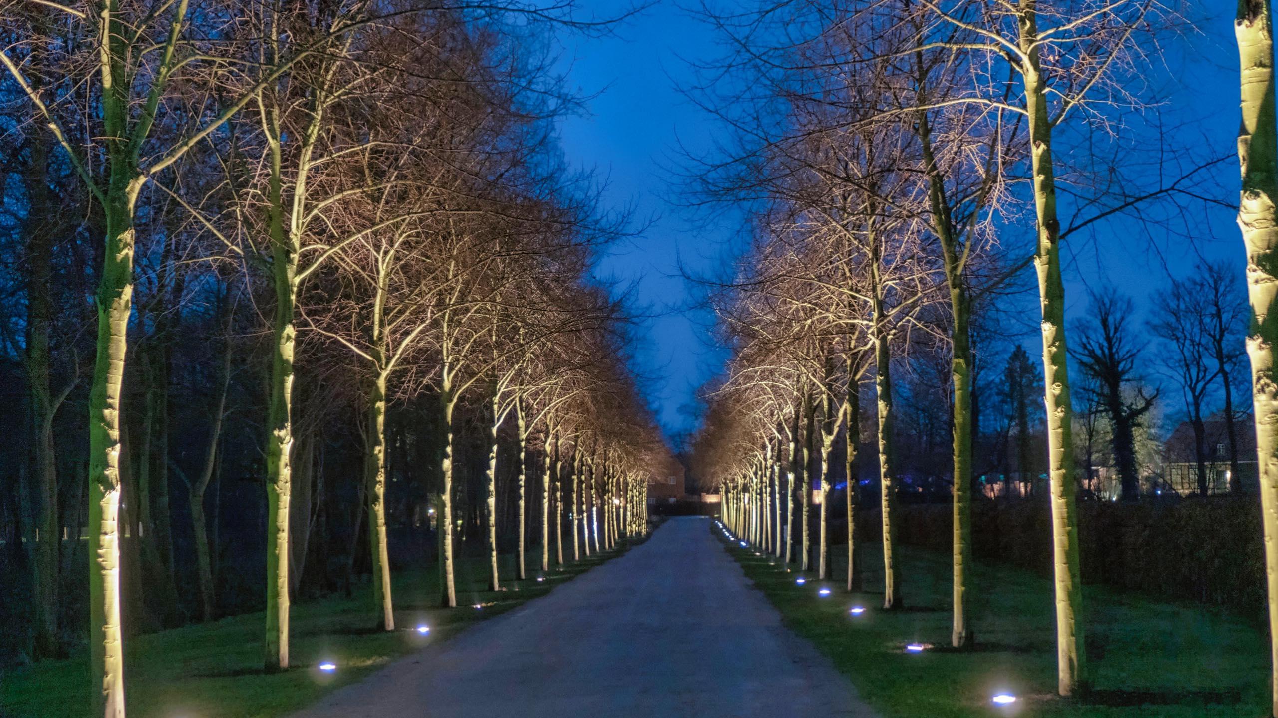 Vom langen offenen Naturstrand führt eine Allee mit mächtigen Linden zum Schlossgut.