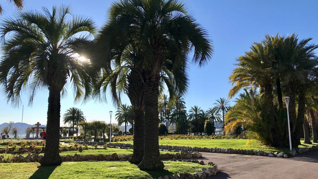 Côte d'Azur: Der drei Kilometer lange, palmenumsäumte Urlaubstraum an der Croisette in Cannes.