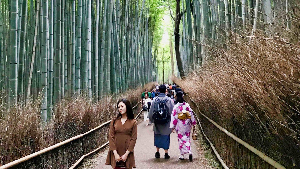Um den Bambuswald von Arashiyama in Kyoto für dich alleine zu haben, musst du ein Frühaufsteher sein.