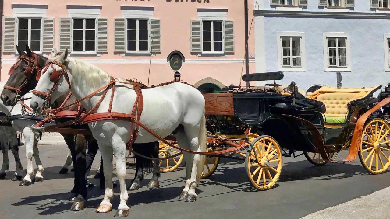 Sightseeing per Pferd: Mit einer Pferdekutsche die malerische Altstadt entdecken.