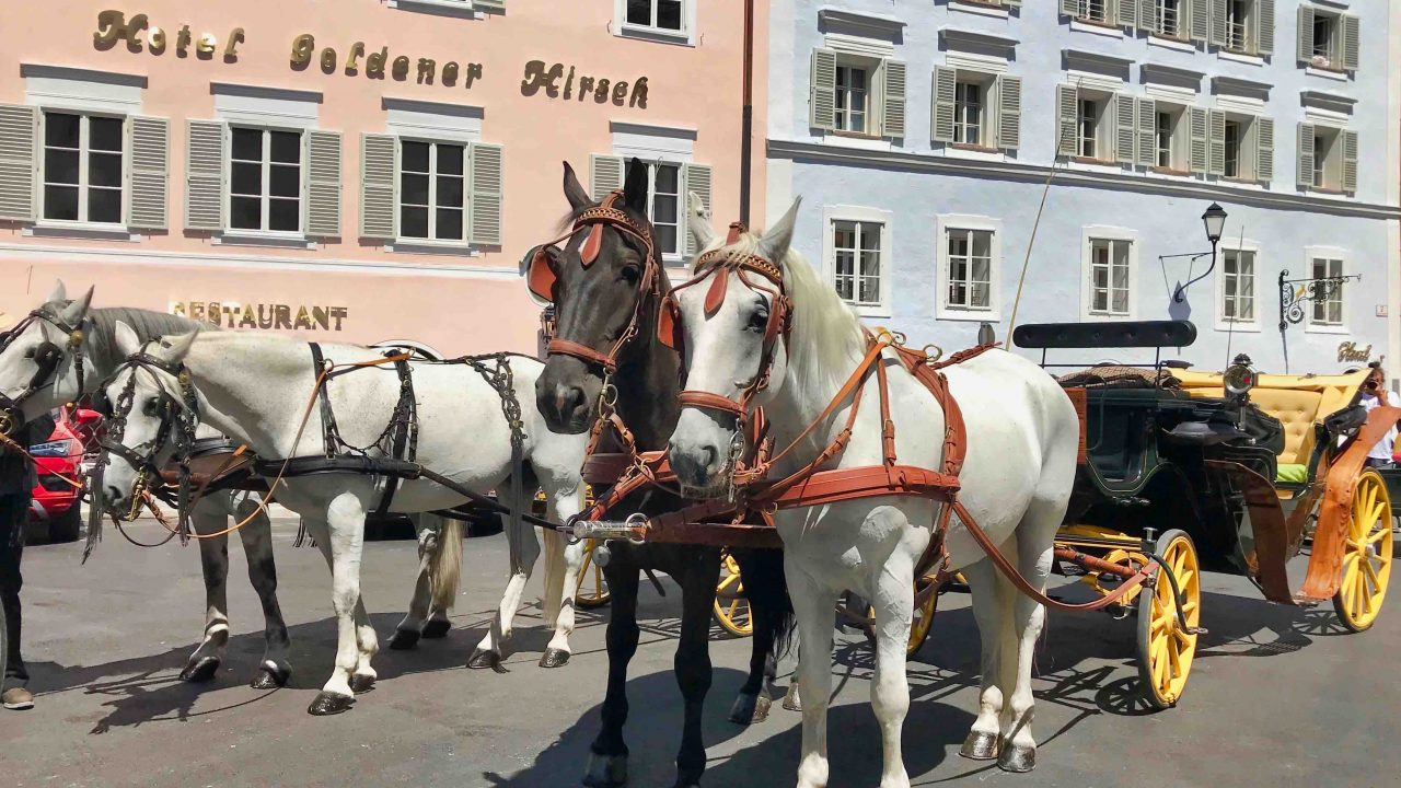Der alte Charme im modernen Gewand, das frisch renovierte Luxushotel Goldener Hirsch strahlt im neuen Glanz.