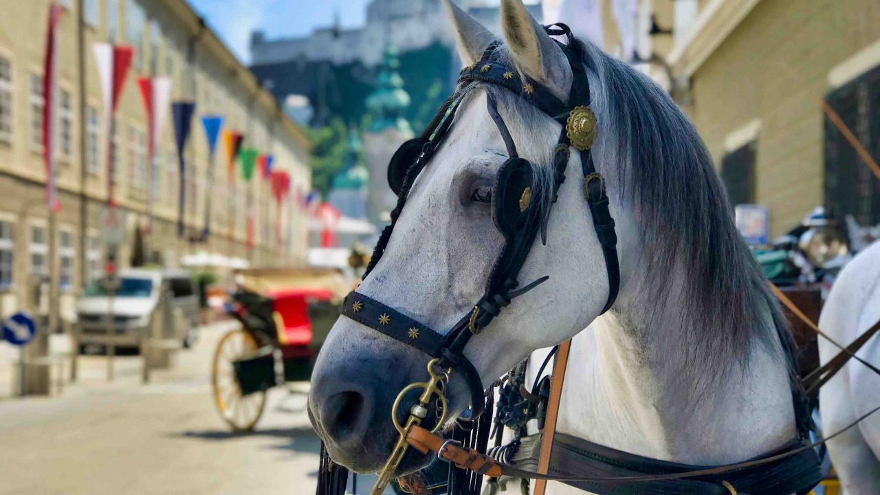 Hochstimmung: Die ganze Stadt feiert die Salzburger Festspiele.