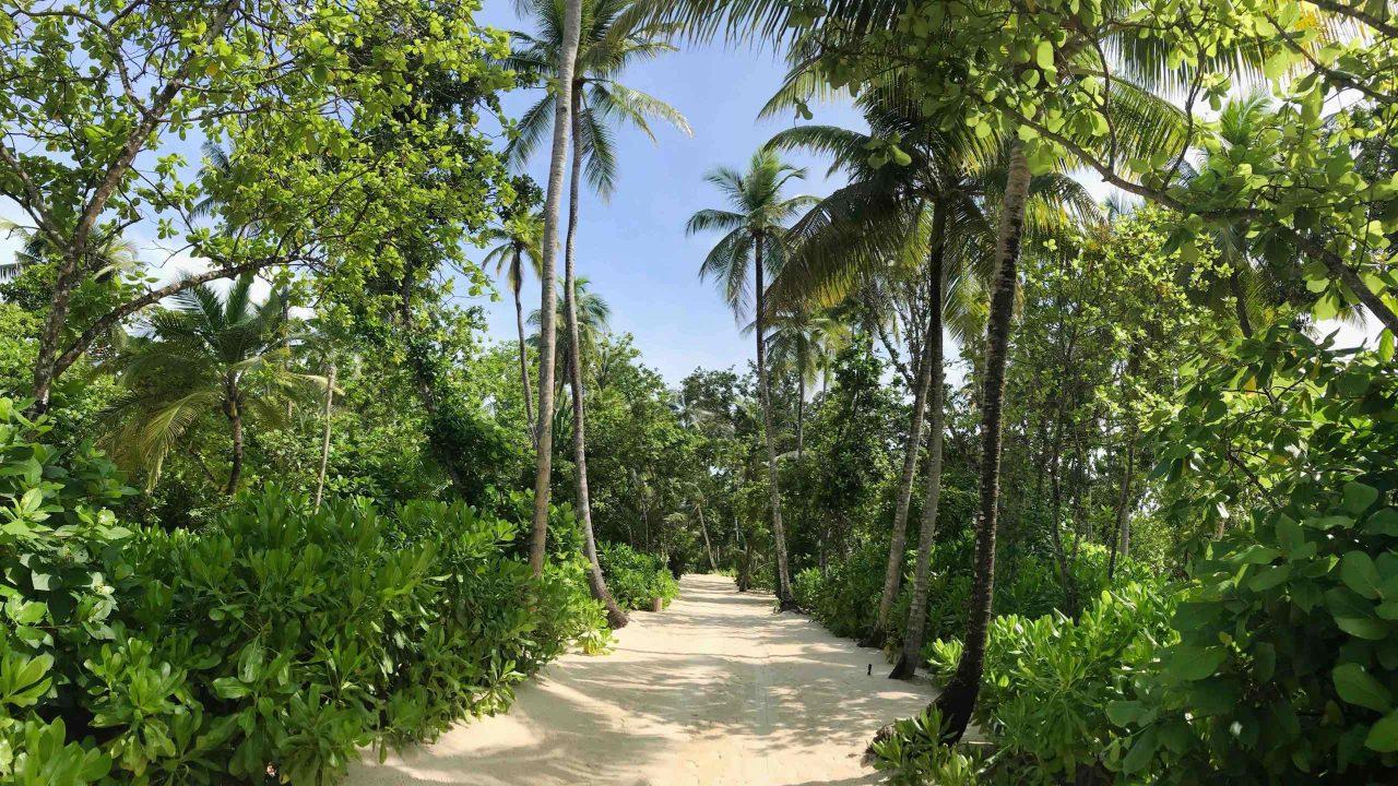 Das grüne Herz der Insel gleicht einem tropischen Garten, bei dem sich die Füße in den weichen Sandwegen verlieren.