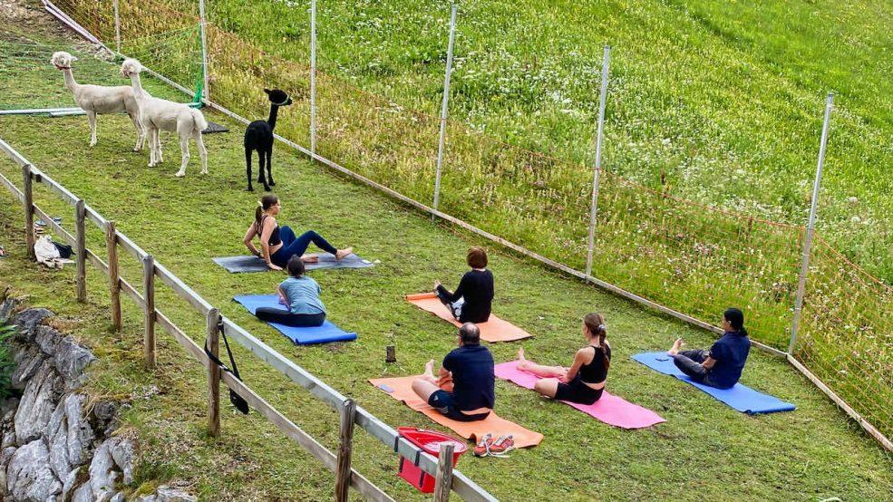 Lech am Arlberg Aurelio Chalet Luxushotel Reisetipps Alpaka Yoga